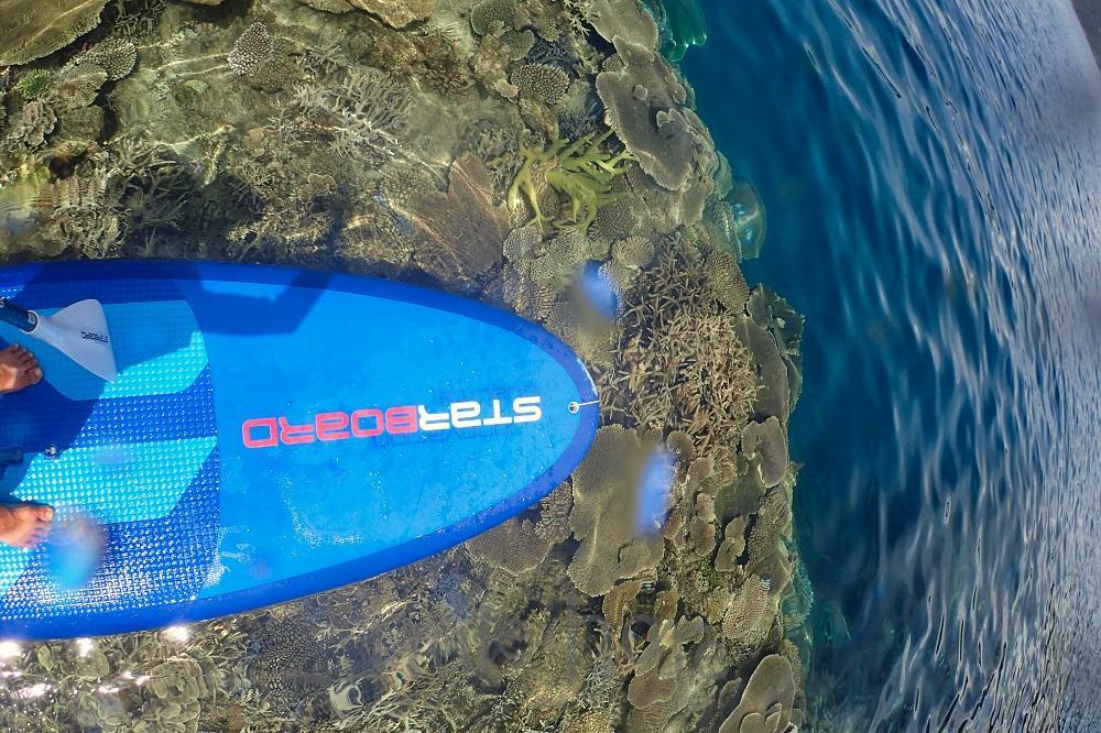 奄美大島、加計呂麻島のサンゴ礁畑でSUPシュノーケリング